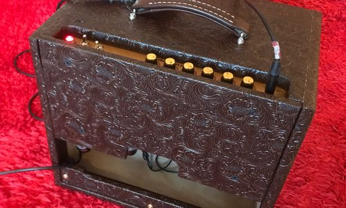 Single ten 25w model - Fat Tone Amps specialise in creating and building bespoke tube amps for harmonicas. With customised reverb and tremolo options available, our amps allow you to release your true tone.